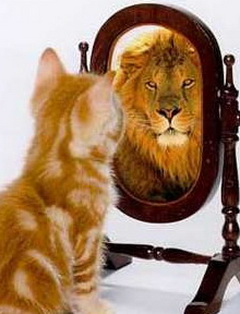 What do you see in the mirror....?